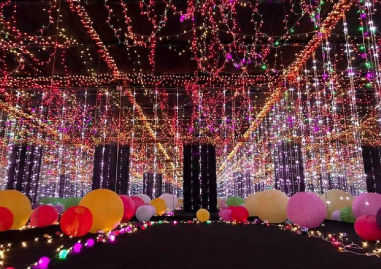 5 Christmas lights shows you can hit up to warm you up for the holidays