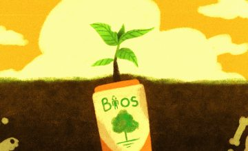 This biodegradable urn lets you grow into a tree when you die