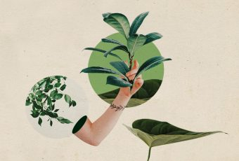 Houseplant parents, it's time to move out of our comfort zones