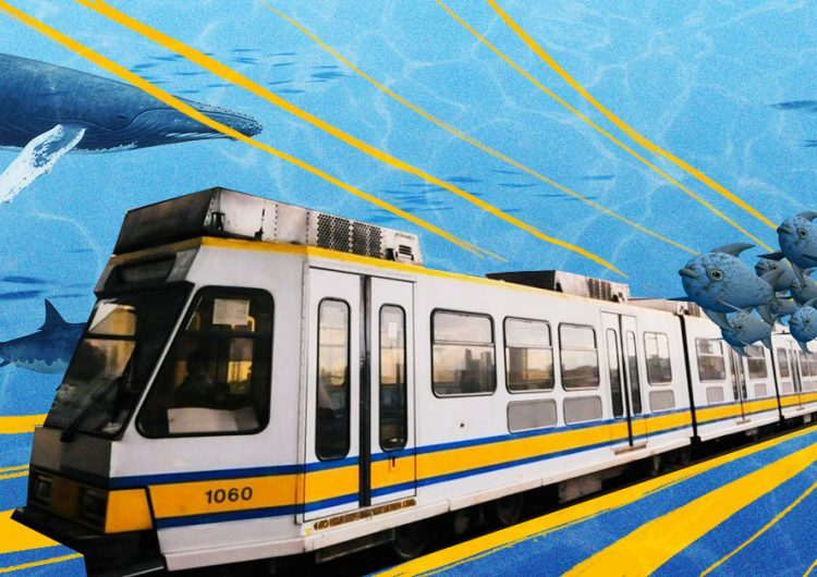Hey, students! You can now ride our trains for free on weekdays