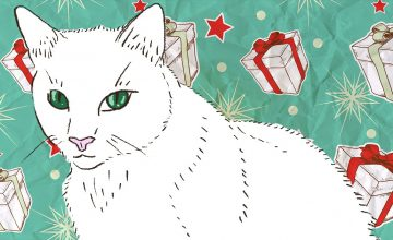 On gift-giving and life lessons, as told by a new cat mom