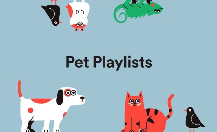 Attention, pet owners: Spotify for Pets is a thing now