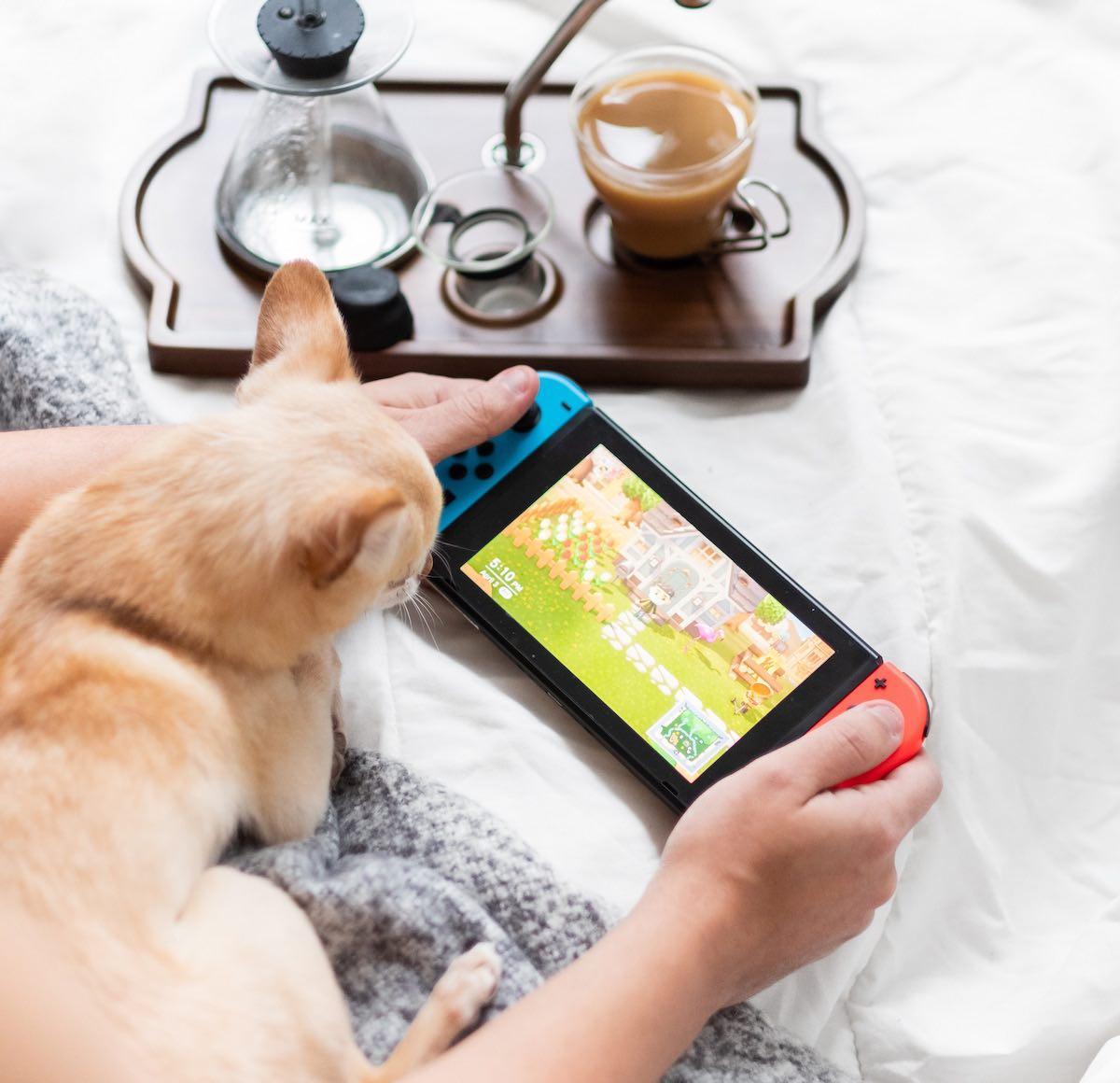 animal crossing self-care games