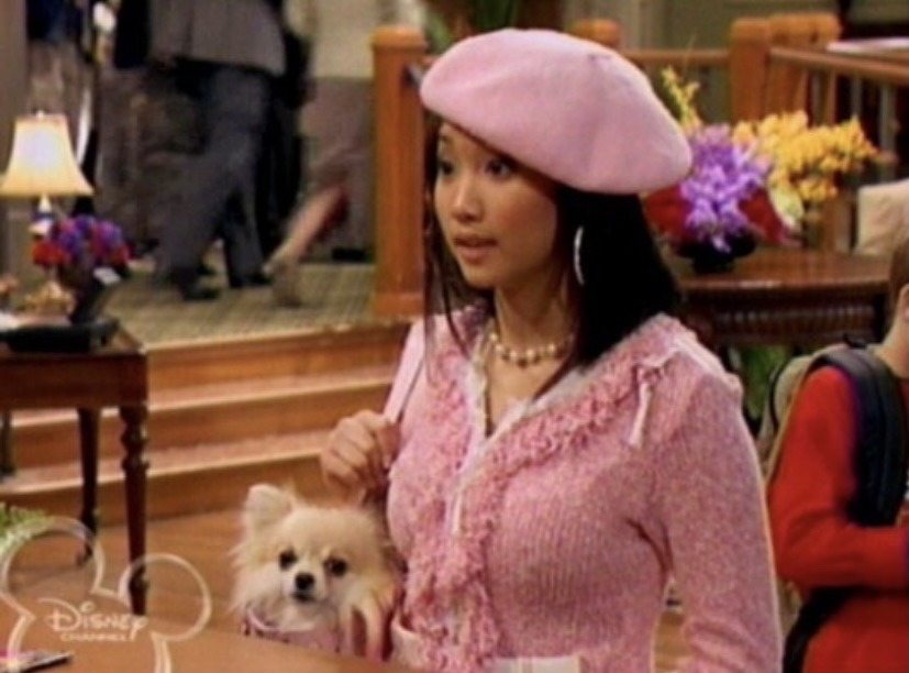 London Tipton in all pink, carrying her pet dog inside a bag