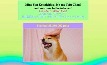 Local good boi Tofu Chan is in need of your virtual pats