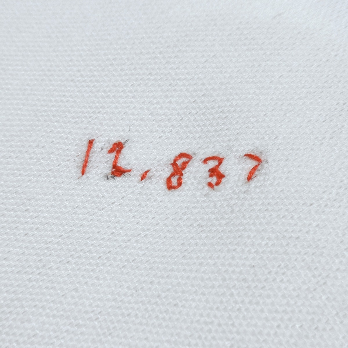 For this Samar-born artist, embroidery is protest 6