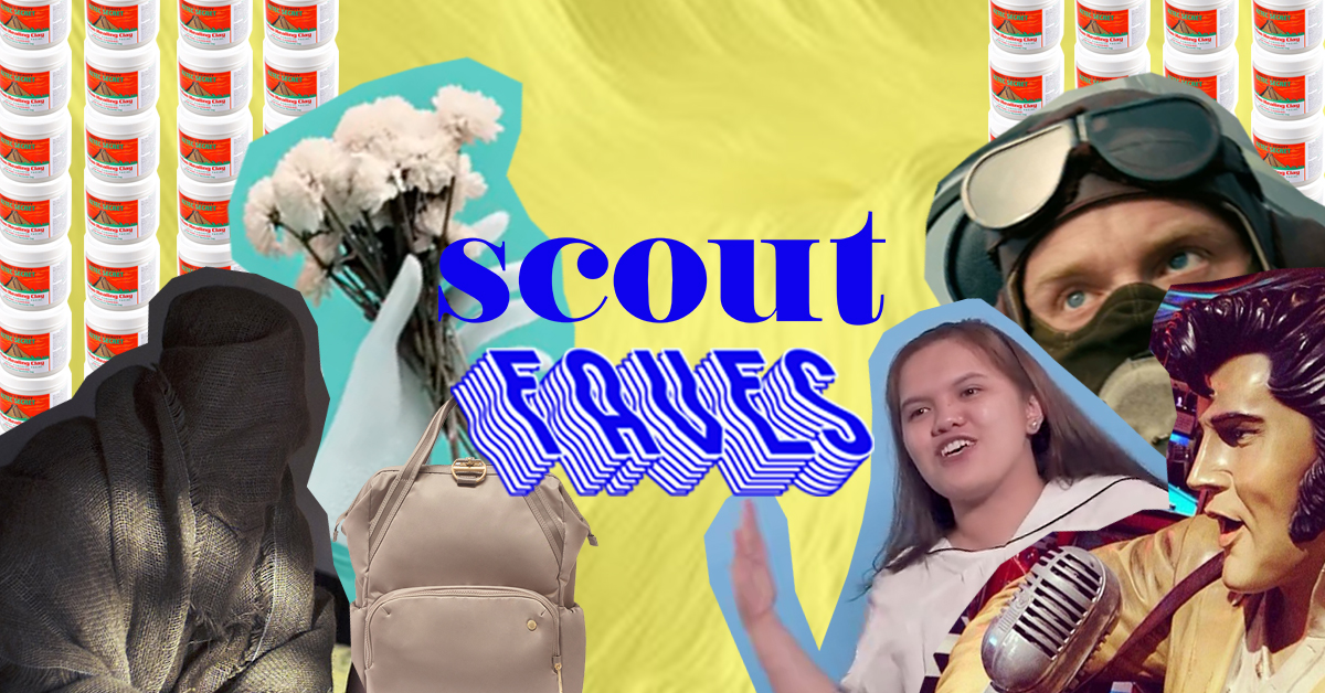 Last week's #ScoutFaves: Aries, Dunkirk, Potty Lesaguis